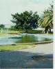 Namibia 1987